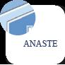 Anaste: Associazione Nazionale Strutture Terza Età